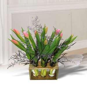 Tulips -- 123