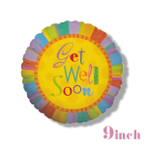 Get Well 9 Inch