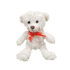Teddy w 23cm