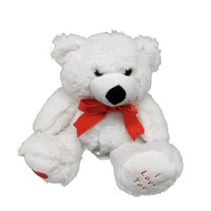 Teddy White 23cm